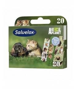 SALVELOX Apósitos Adhesivos Animales 20ud Apósitos