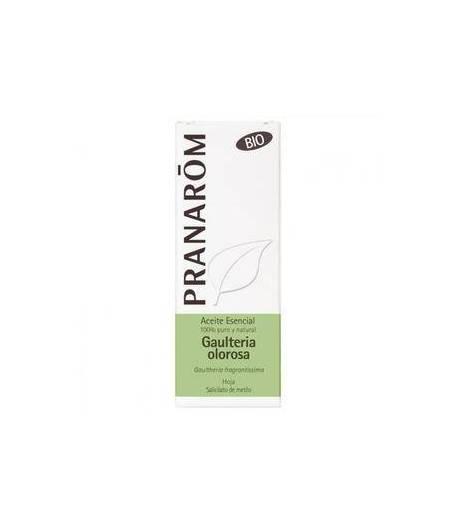 Aceite Esencial Gaulteria Olorosa BIO 10ml PRANAROM Articulaciones