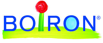 borion logo